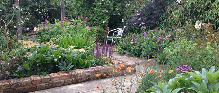 Sarah Bickers: Garden